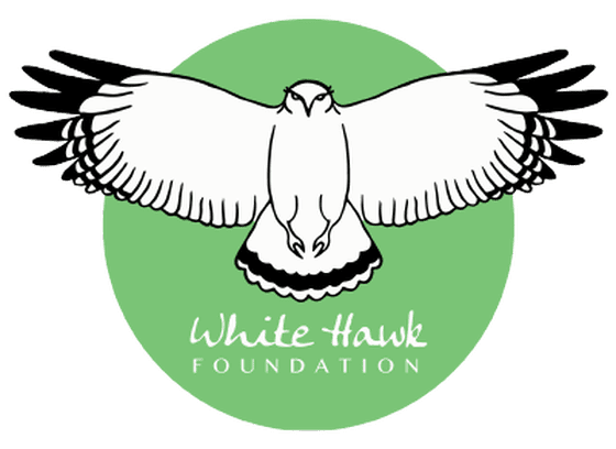 white hawk foundation