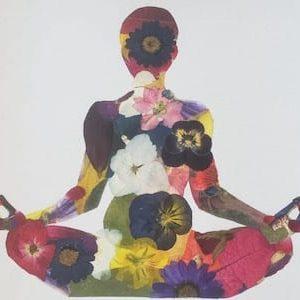yoga lw